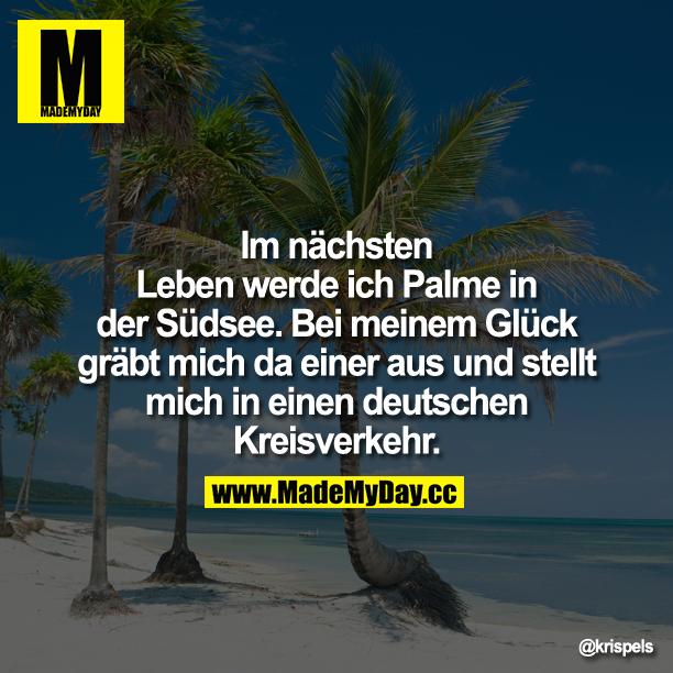 Im nächsten Leben werde ich Palme in der Südsee.<br /> <br /> Bei meinem Glück gräbt mich da einer aus und stellt mich in einen deutschen Kreisverkehr.