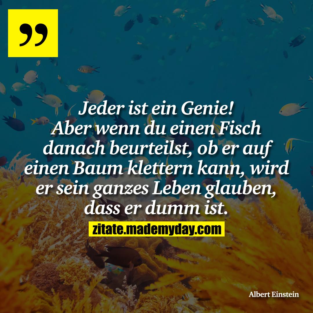 Jeder ist ein Genie! Aber wenn du einen Fisch danach beurteilst, ob er auf einen Baum klettern kann, wird er sein ganzes Leben glauben, dass er dumm ist.