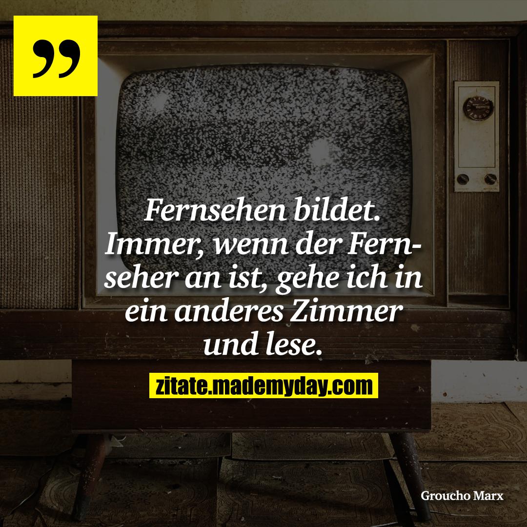 Fernsehen bildet. Immer, wenn der Fernseher an ist, gehe ich in ein anderes Zimmer und lese.