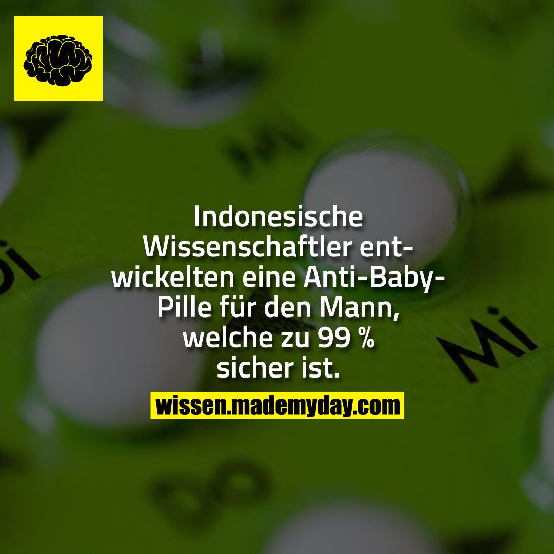 Indonesische Wissenschaftler entwickelten eine Anti-Baby-Pille für den Mann, welche zu 99 % sicher ist.