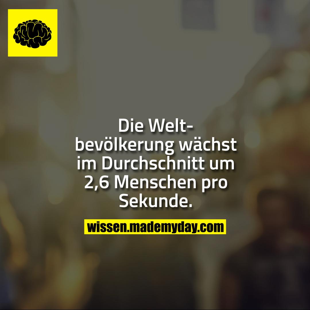 Die Weltbevölkerung wächst im Durchschnitt um 2,6 Menschen pro Sekunde.