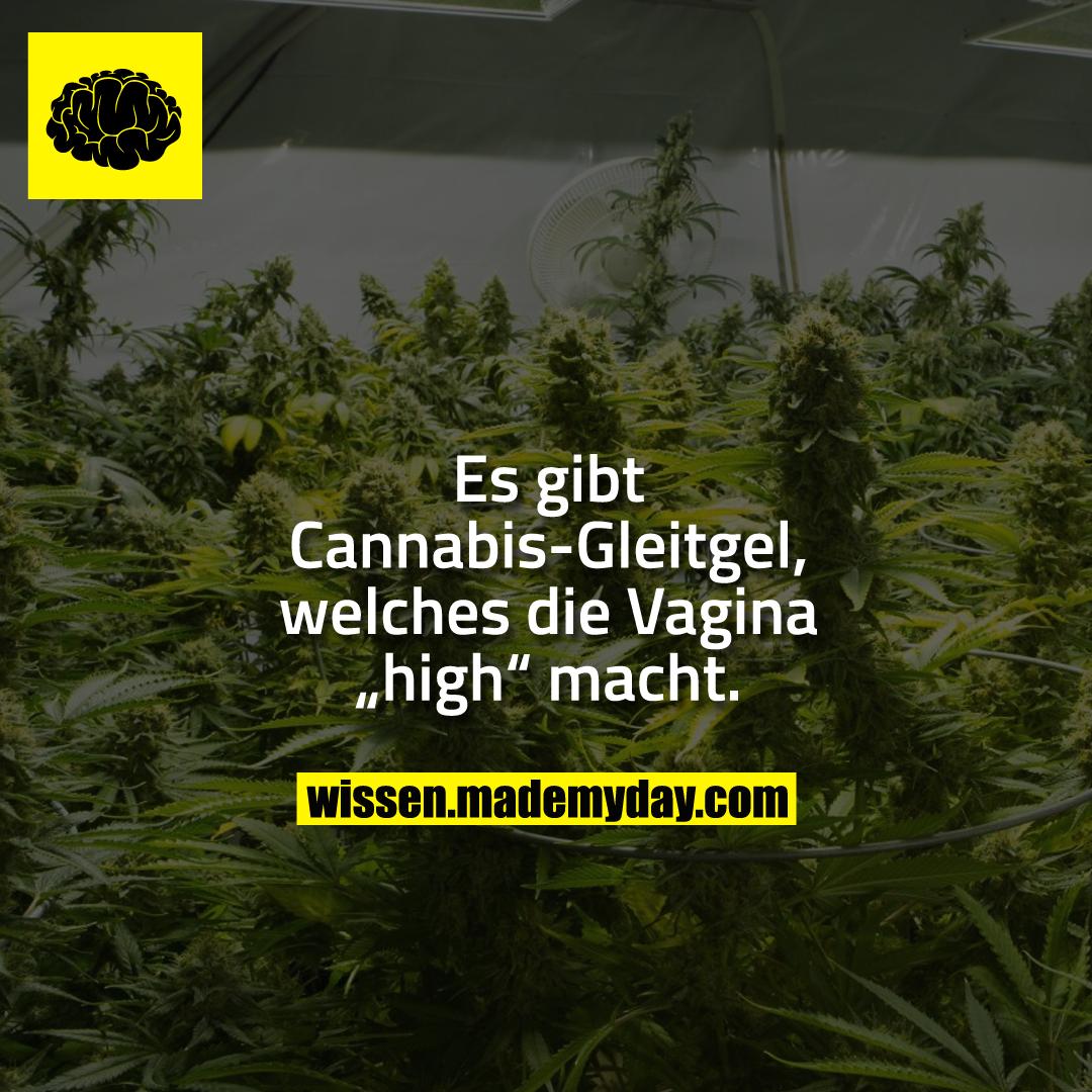 """Es gibt Cannabis-Gleitgel, welches die Vagina """"high"""" macht."""