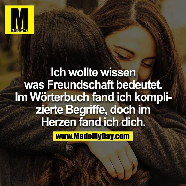 Ich wollte wissen was Freundschaft bedeutet, im Wörterbuch fand ich komplizierte Begriffe, doch im Herzen fand ich dich.<br />
