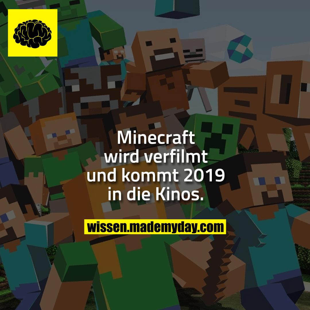 Minecraft wird verfilmt und kommt 2019 in die Kinos.