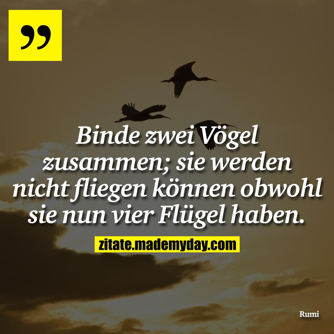 Binde zwei Vögel zusammen; sie werden nicht fliegen können obwohl sie nun vier Flügel haben.