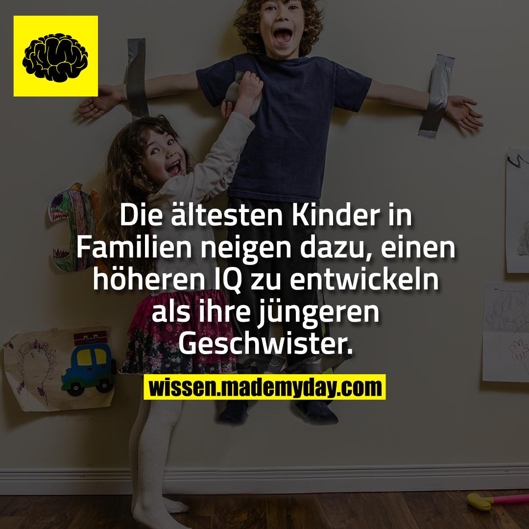 Die ältesten Kinder in Familien neigen dazu, einen höheren IQ zu entwickeln als ihre jüngeren Geschwister.