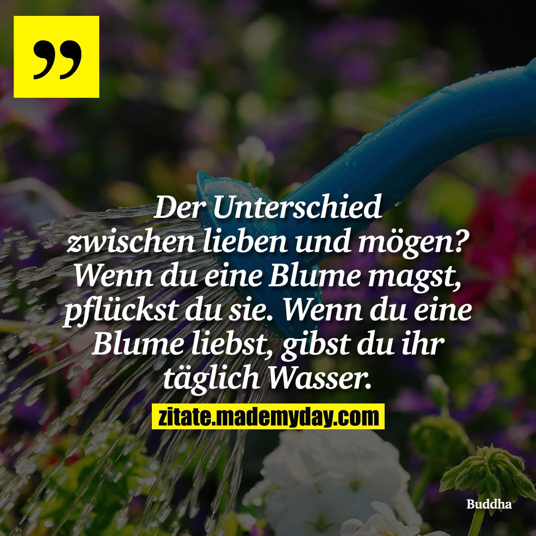 Der Unterschied zwischen lieben und mögen? Wenn du eine Blume magst, pflückst du sie. Wenn du eine Blume liebst, gibst du ihr täglich Wasser.
