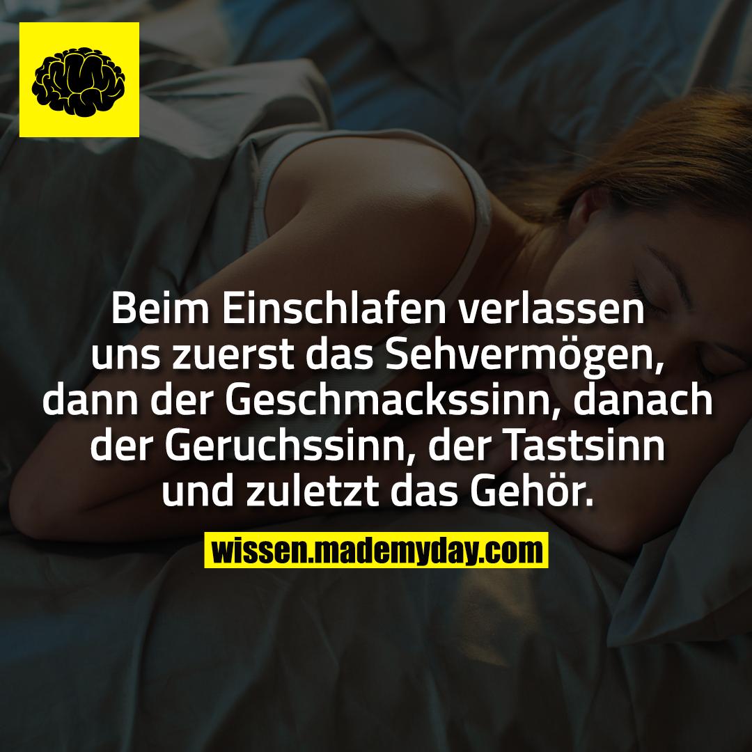 Beim Einschlafen verlassen uns zuerst das Sehvermögen, dann der Geschmackssinn, danach der Geruchssinn, der Tastsinn und zuletzt das Gehör.