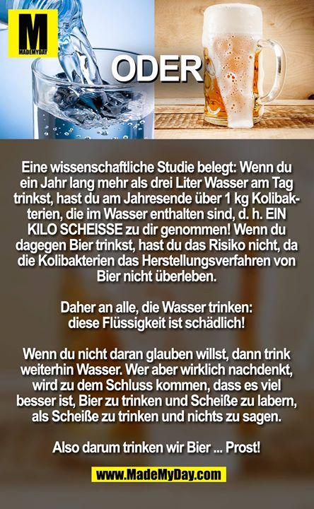 Eine wissenschaftliche Studie belegt: Wenn du ein Jahr lang mehr als drei Liter Wasser am Tag trinkst, hast du am Jahresende über 1 kg Kolibakterien, die im Wasser enthalten sind, d. h. EIN KILO SCHEISSE zu dir genommen! Wenn du dagegen Bier trinkst, hast du das Risiko nicht, da die Kolibakterien das Herstellungsverfahren von Bier nicht überleben. <br /> <br /> Daher an alle, die Wasser trinken: diese Flüssigkeit ist schädlich! <br /> <br /> Wenn du nicht daran glauben willst, dann trink weiterhin Wasser. Wer aber wirklich nachdenkt, wird zu dem Schluss kommen, dass es viel besser ist, Bier zu trinken und Scheiße zu labern, als Scheiße zu trinken und nichts zu sagen. <br /> <br /> Also darum trinken wir Bier ... Prost!