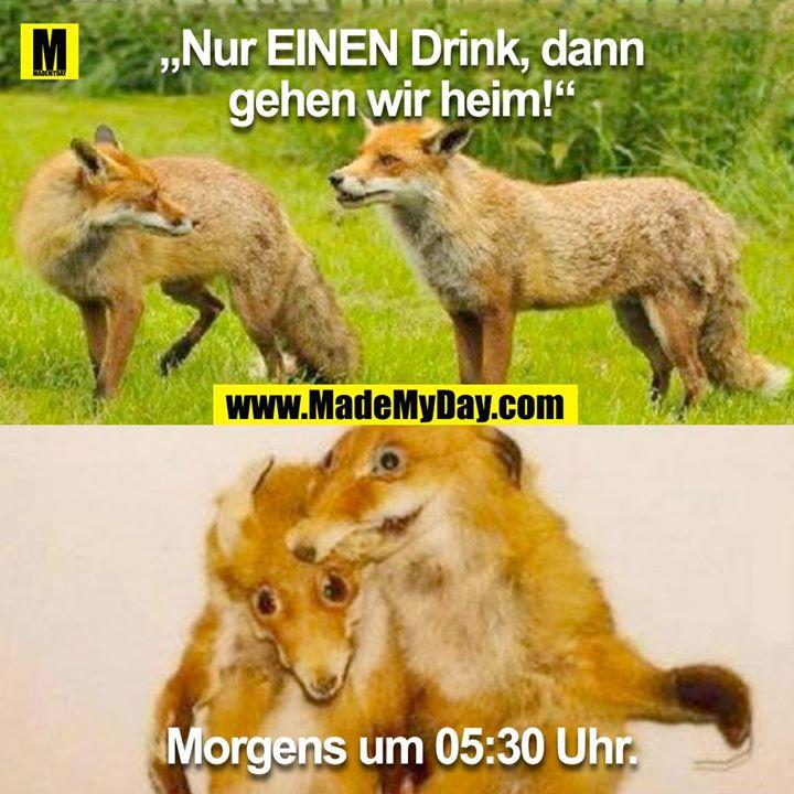 """""""Nur EINEN Drink, und dann gehen wir heim!""""<br /> <br /> Morgens um 05:30"""