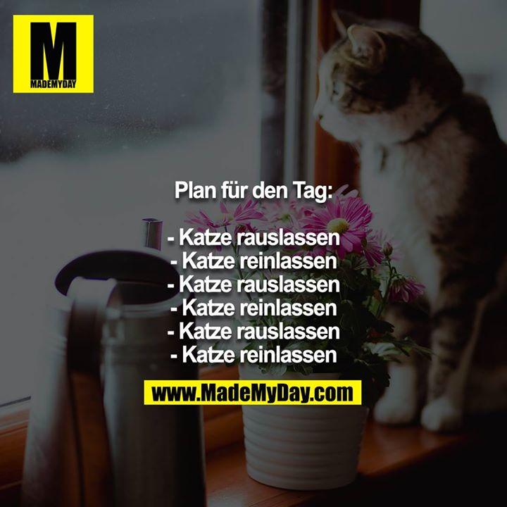 Plan für den Tag:<br /> <br /> - Katze rauslassen<br /> - Katze reinlassen<br /> - Katze rauslassen<br /> - Katze reinlassen<br /> - Katze rauslassen<br /> - Katze reinlassen