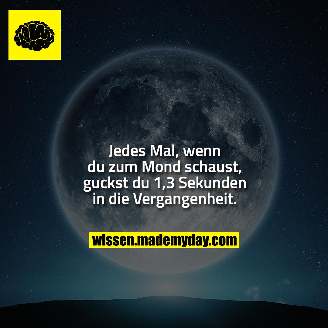 Jedes Mal, wenn du zum Mond schaust, guckst du 1,3 Sekunden in die Vergangenheit.