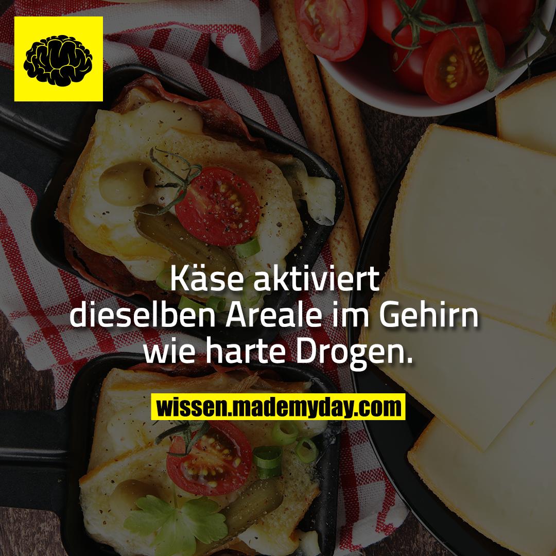 Käse aktiviert dieselben Areale im Gehirn wie harte Drogen.