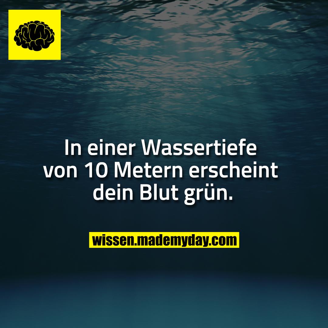 In einer Wassertiefe von 10 Metern erscheint dein Blut grün.