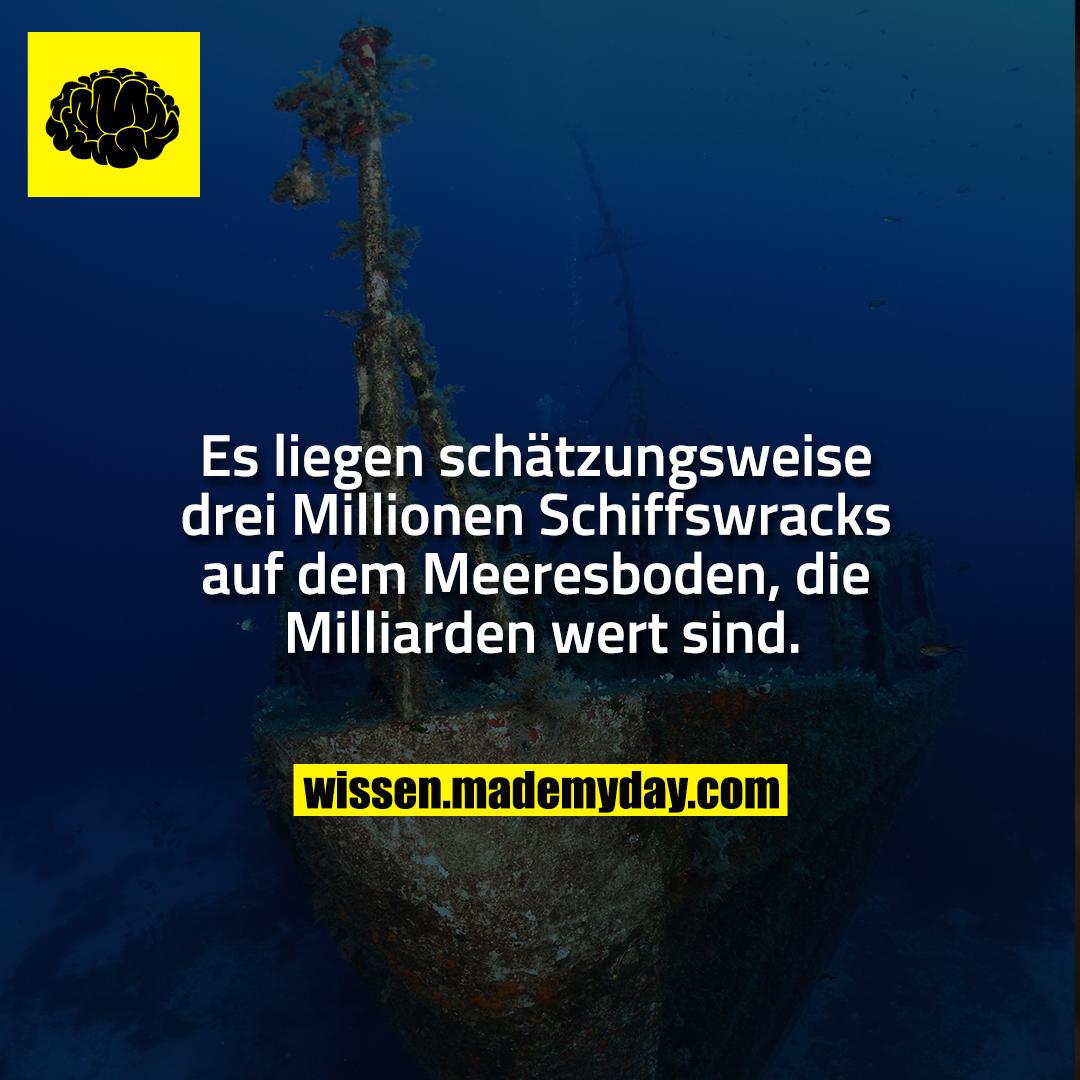 Es liegen schätzungsweise drei Millionen Schiffswracks auf dem Meeresboden, die Milliarden wert sind.