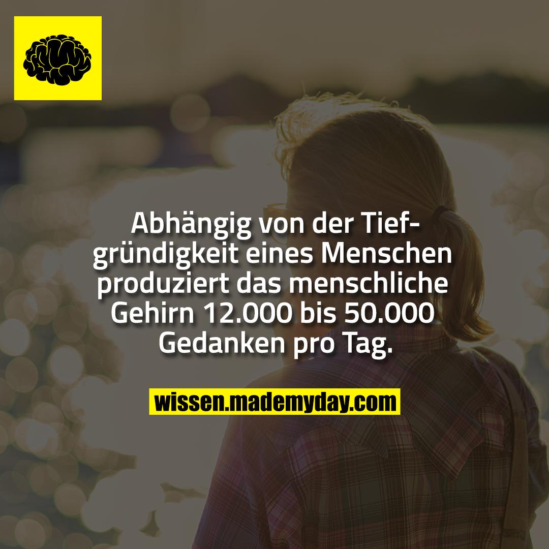 Abhängig von der Tiefgründigkeit eines Menschen produziert das menschliche Gehirn 12.000 bis 50.000 Gedanken pro Tag.