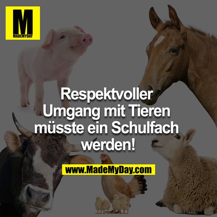 Respektvoller<br /> Umgang mit Tieren<br /> müsste ein Schulfach<br /> werden!