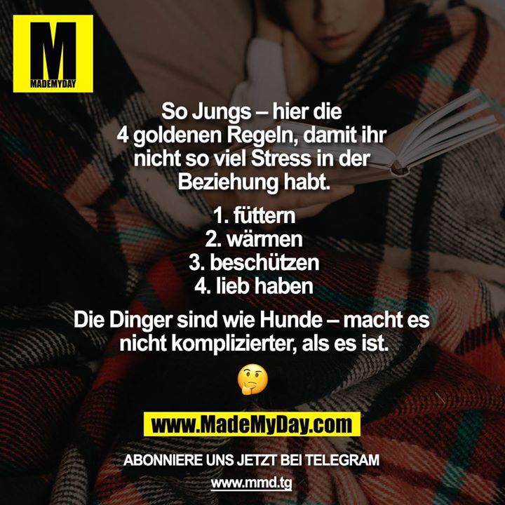 So Jungs - hier die 4 goldenen Regeln, damit ihr nicht so viel Stress in der Beziehung habt.<br /> <br /> 1. füttern<br /> 2. wärmen<br /> 3. beschützen<br /> 4. lieb haben<br /> <br /> Die Dinger sind wie Hunde - macht es nicht komplizierter, als es ist ????