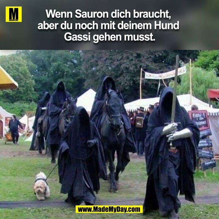 Wenn Sauron dich braucht, aber du noch mit deinem Hund Gassi gehen musst.