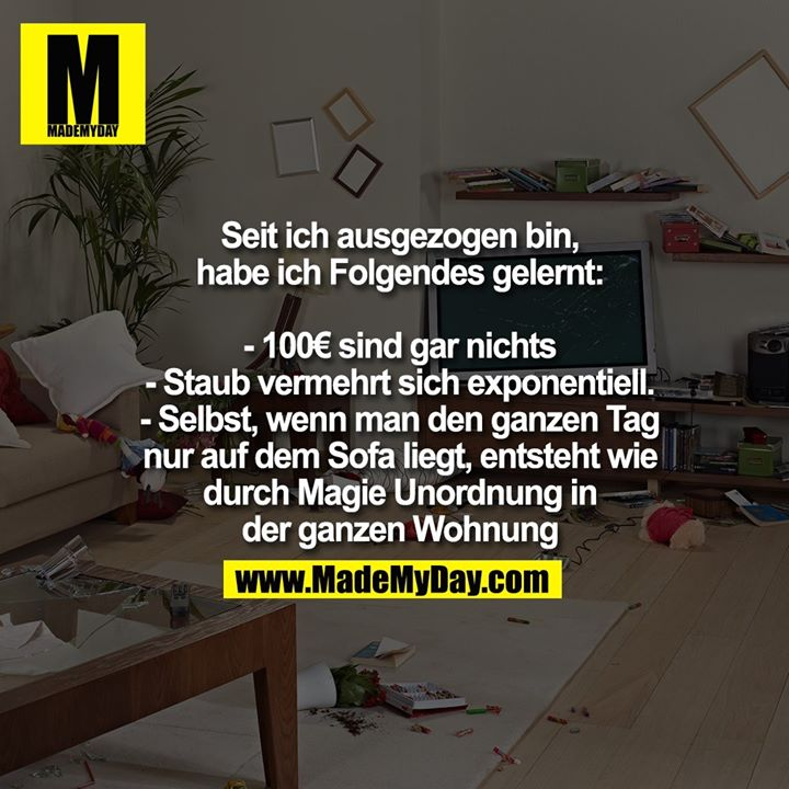 Seit ich ausgezogen bin, habe ich Folgendes gelernt:<br /> <br /> - 100€ sind gar nichts<br /> - Staub vermehrt sich exponentiell.<br /> - Selbst, wenn man den ganzen Tag nur auf dem Sofa liegt, entsteht wie durch Magie Unordnung in der ganzen Wohnung