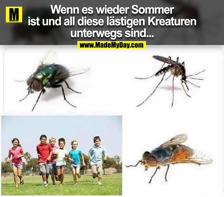 Wenn es wieder Sommer<br /> ist und all diese lästigen Kreaturen<br /> unterwegs sind...