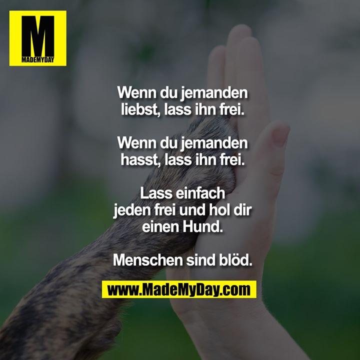 Wenn du jemanden<br /> liebst, lass ihn frei.<br /> <br /> Wenn du jemanden<br /> hasst, lass ihn frei.<br /> <br /> Lass einfach<br /> jeden frei und hol dir<br /> einen Hund.<br /> <br /> Menschen sind blöd.