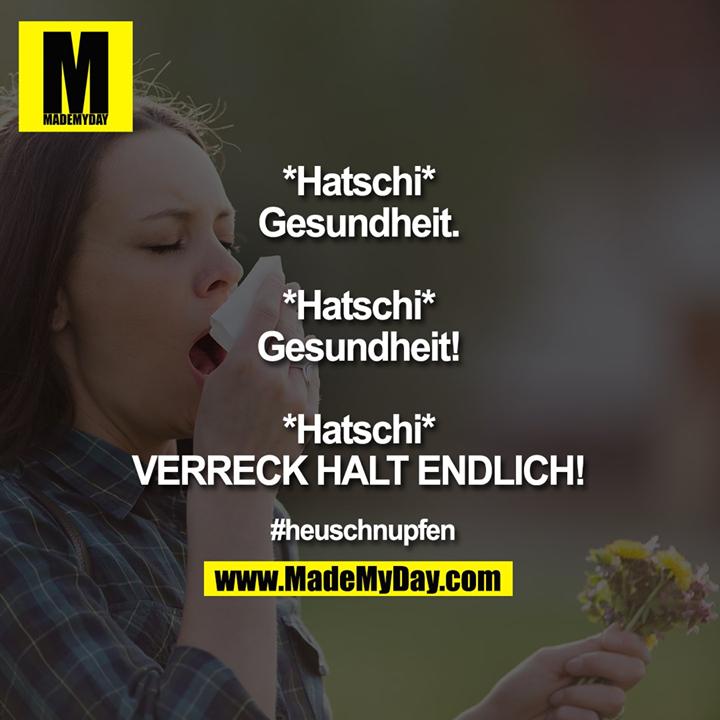 *Hatschi*<br /> Gesundheit.<br /> <br /> *Hatschi*<br /> Gesundheit!<br /> <br /> *Hatschi*<br /> VERRECK HALT ENDLICH!<br /> <br /> #heuschnupfen