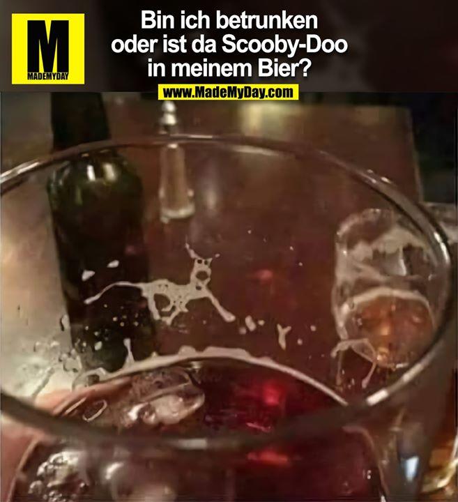 Bin ich betrunken<br /> oder ist da Scooby-Doo<br /> in meinem Bier?
