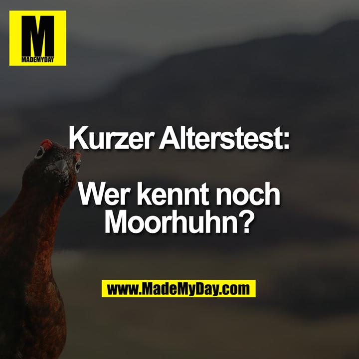 Kurzer Alterstest:<br /> <br /> Wer kennt noch Moorhuhn?