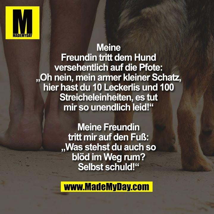 """Meine<br /> Freundin tritt dem Hund<br /> versehentlich auf die Pfote:<br /> """"Oh nein, mein armer kleiner Schatz,<br /> hier hast du 10 Leckerlis und 100<br /> Streicheleinheiten, es tut<br /> mir so unendlich leid!""""<br /> <br /> Meine Freundin<br /> tritt mir auf den Fuß:<br /> """"Was stehst du auch so<br /> blöd im Weg rum?<br /> Selbst schuld!"""""""