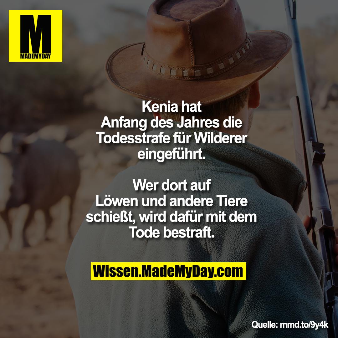 Kenia hat Anfang des Jahres die Todesstrafe für Wilderer eingeführt.<br /> Wer dort auf Löwen und andere Tiere schießt, wird dafür mit dem Tode bestraft.