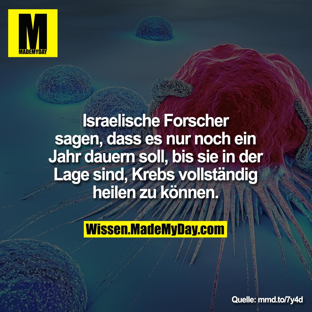 Israelische Forscher sagen, dass es nur noch ein Jahr dauern soll, bis sie in der Lage sind, Krebs vollständig heilen zu können.