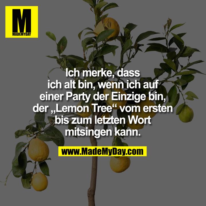 """Ich merke, dass ich alt bin, wenn ich auf einer Party der Einzige bin, der """"Lemon Tree"""" vom ersten bis zum letzten Wort mitsingen kann."""