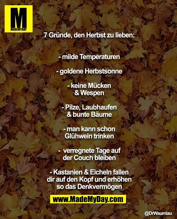 7 Gründe, den Herbst zu lieben:<br /> - milde Temperaturen<br /> - goldene Herbstsonne<br /> - keine Mücken & Wespen<br /> - Pilze, Laubhaufen & bunte Bäume<br /> - man kann schon Glühwein trinken<br /> -  verregnete Tage auf der Couch bleiben<br /> - Kastanien & Eicheln fallen dir auf den Kopf und<br /> erhöhen so das Denkvermögen
