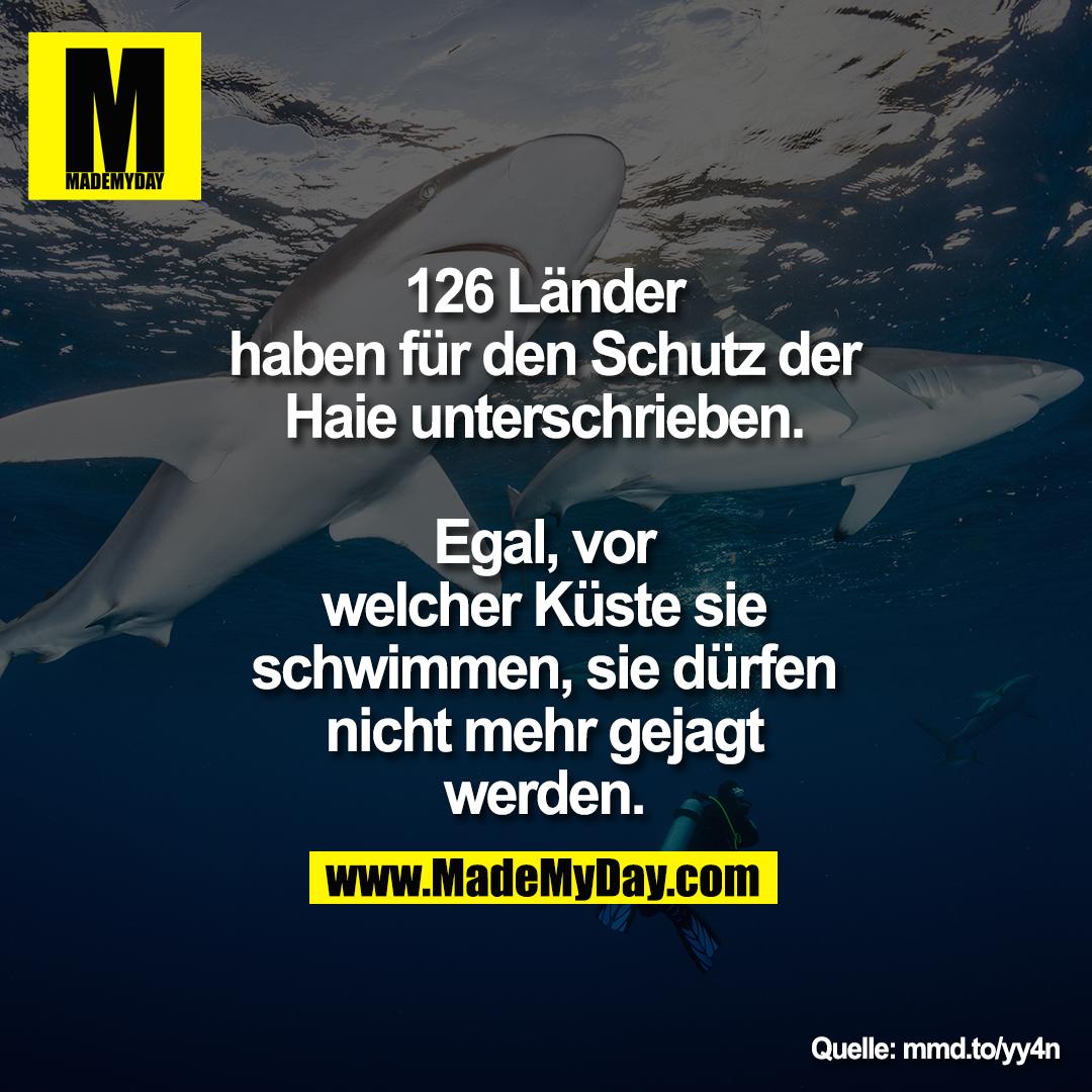 126 Länder haben für den Schutz der<br /> Haie unterschrieben.<br /> Egal, vor welcher Küste sie schwimmen, sie dürfen nicht <br /> mehr gejagt werden.