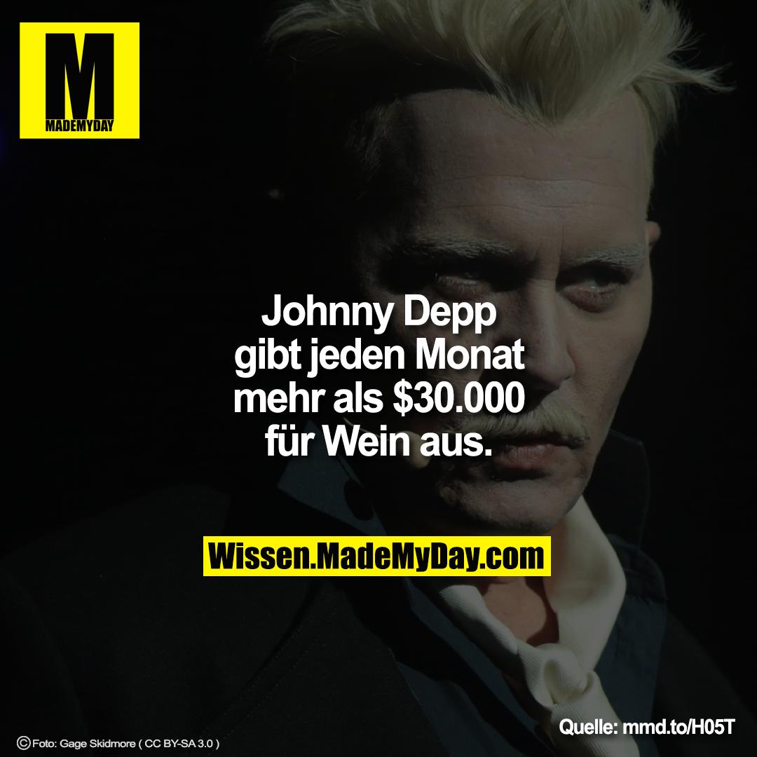 Johnny Depp Gibt Jeden Monat Made My Day