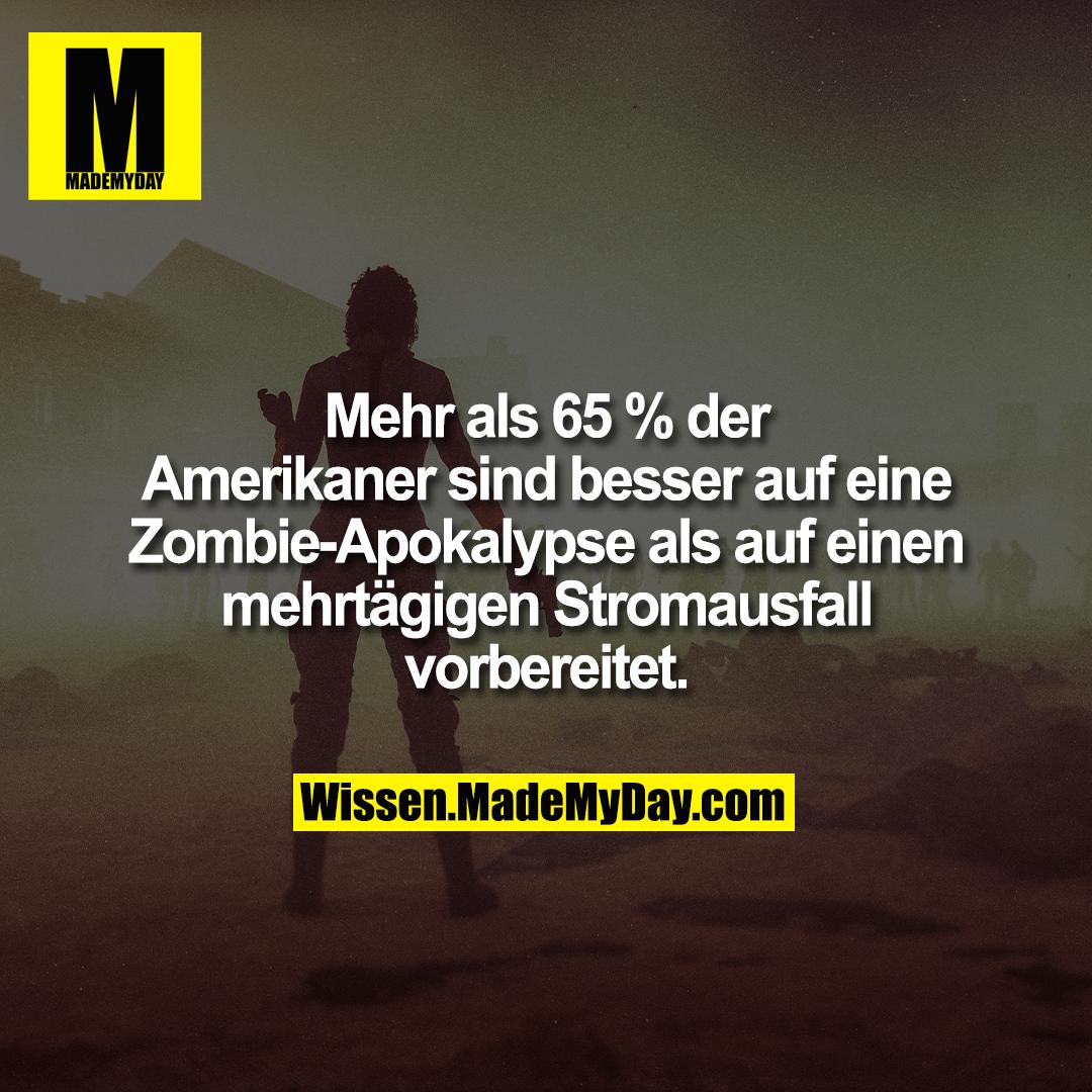 Mehr als 65 % der Amerikaner sind besser auf eine Zombie-Apokalypse als auf einen mehrtägigen Stromausfall vorbereitet.