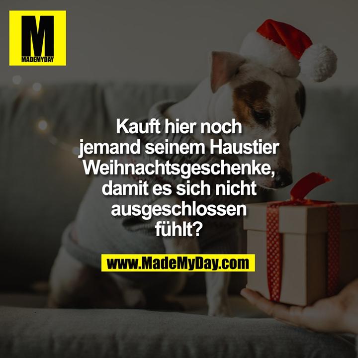 Kauft hier noch<br /> jemand seinem Haustier<br /> Weihnachtsgeschenke,<br /> damit es sich nicht<br /> ausgeschlossen<br /> fühlt?
