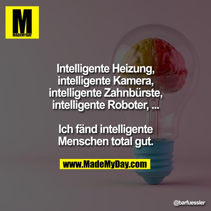 Intelligente Heizung, intelligente Kamera, intelligente Zahnbürste, intelligente Roboter, ...<br /> Ich fänd intelligente Menschen total gut.