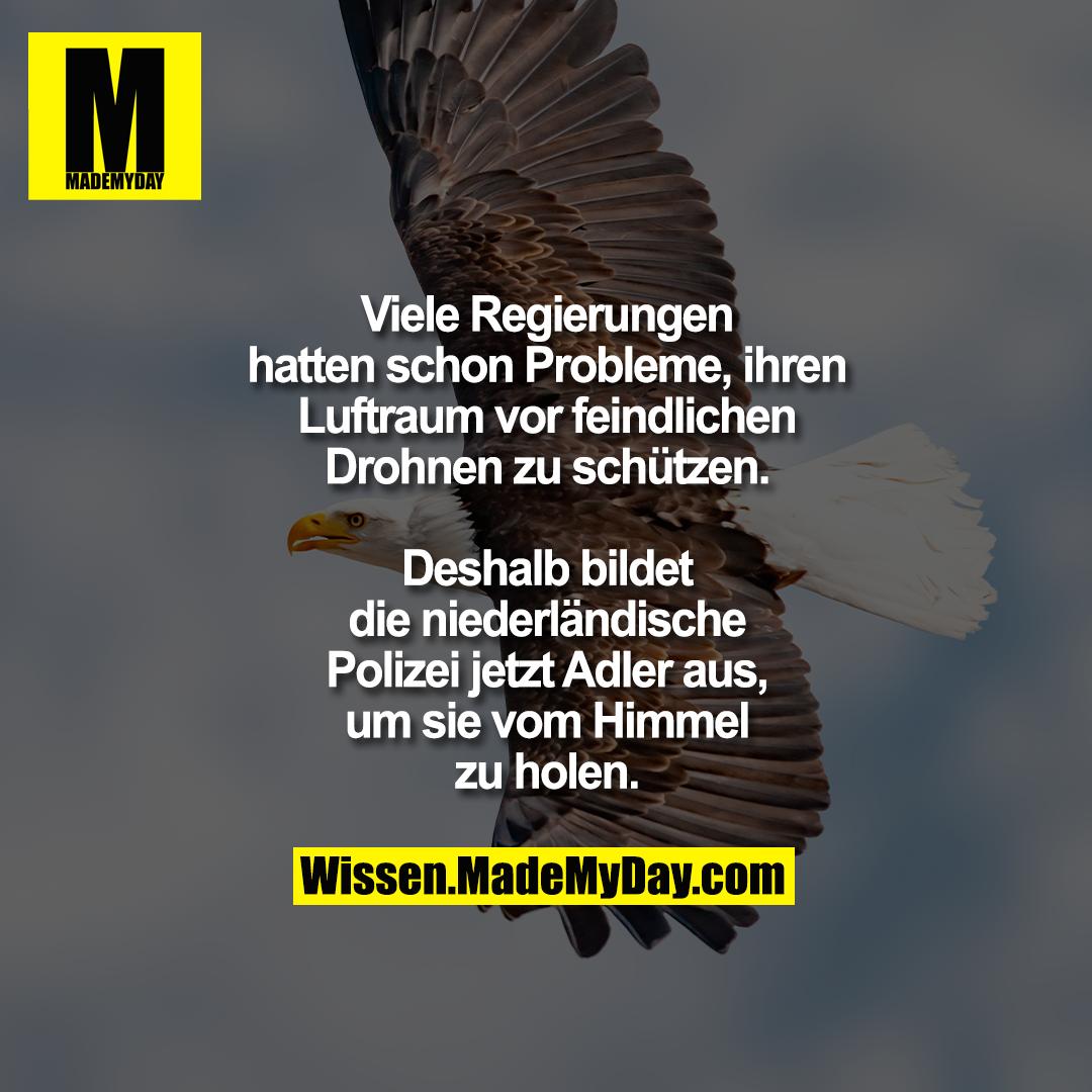 Viele Regierungen hatten schon Probleme, ihren Luftraum vor feindlichen Drohnen zu schützen.<br /> Deshalb bildet die niederländische Polizei jetzt Adler aus, um sie vom Himmel zu holen.