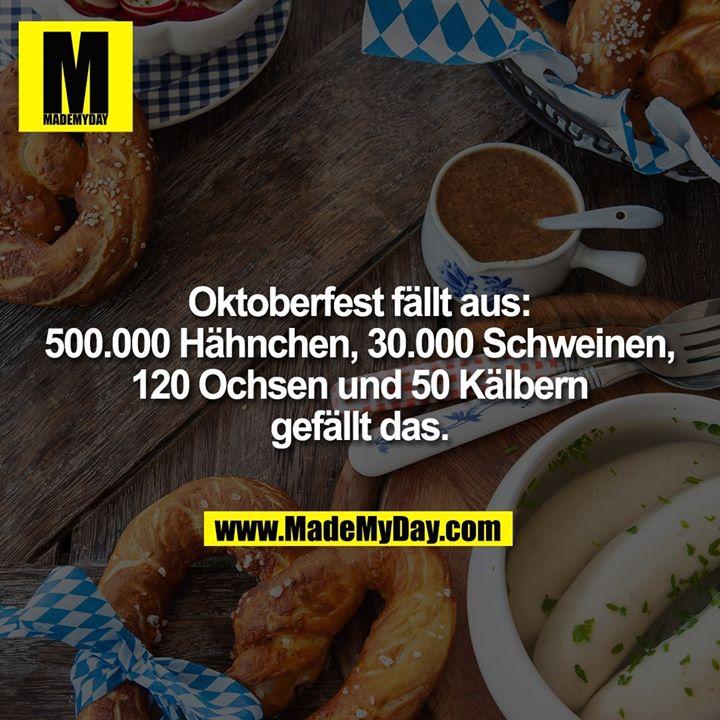 Oktoberfest fällt aus:<br /> 500.000 Hähnchen, 30.000 Schweinen,<br /> 120 Ochsen und 50 Kälbern<br /> gefällt das.