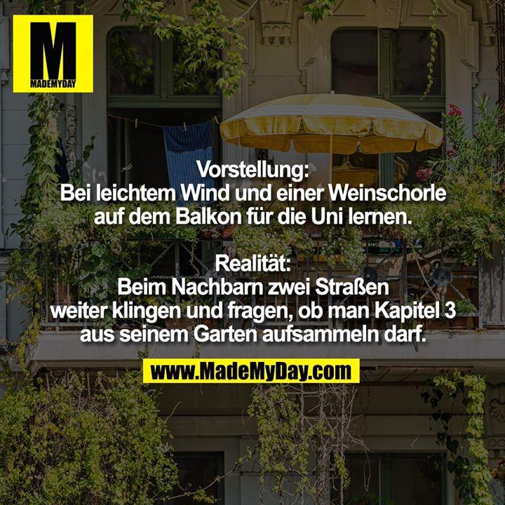 Vorstellung:<br /> Bei leichtem Wind und einer Weinschorle auf dem Balkon für die Uni lernen<br /> <br /> Realität:<br /> Beim Nachbarn zwei Straßen weiter klingen und fragen, ob man Kapitel 3 aus seinem Garten aufsammeln darf
