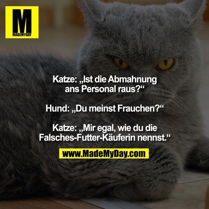 """Katze: """"Ist die Abmahnung ans Personal raus?"""" <br /> <br /> Hund: """"Du meinst Frauchen?"""" <br /> <br /> Katze: """"Mir egal, wie du die Falsches-Futter-Käuferin nennst."""""""