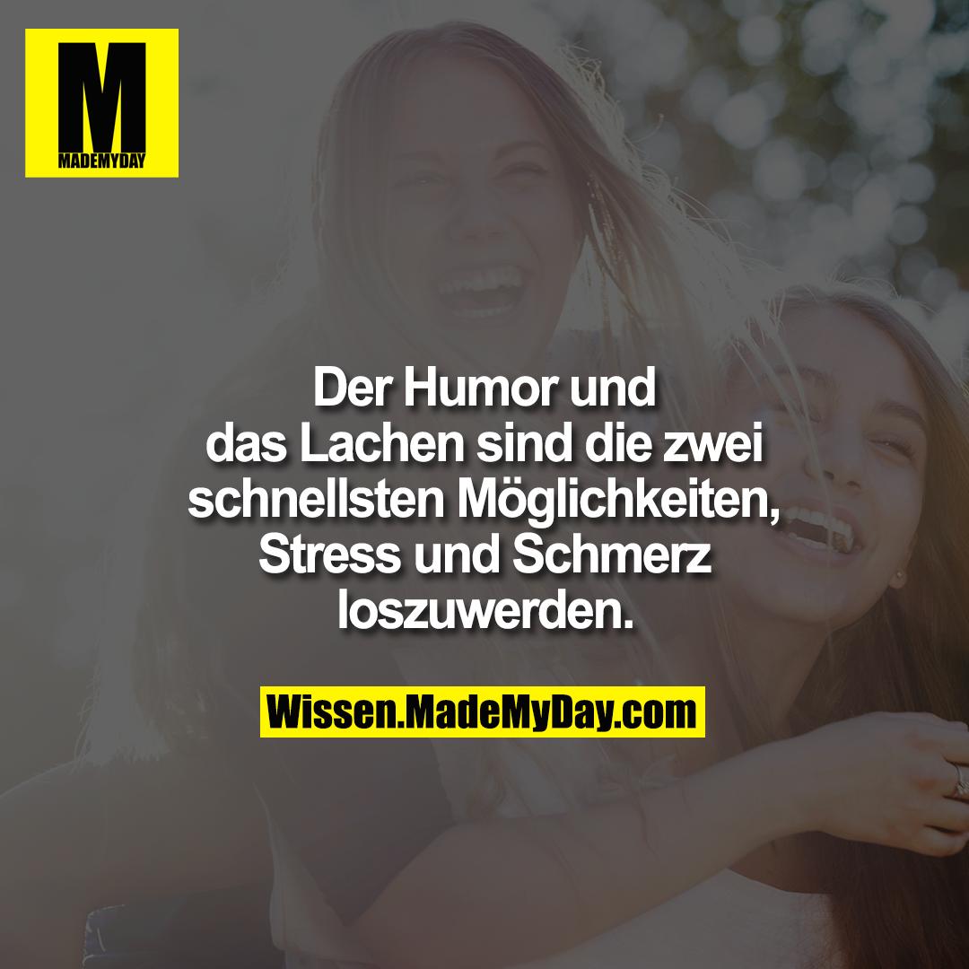 Der Humor und das Lachen sind die zwei schnellsten Möglichkeiten, Stress und Schmerz loszuwerden.