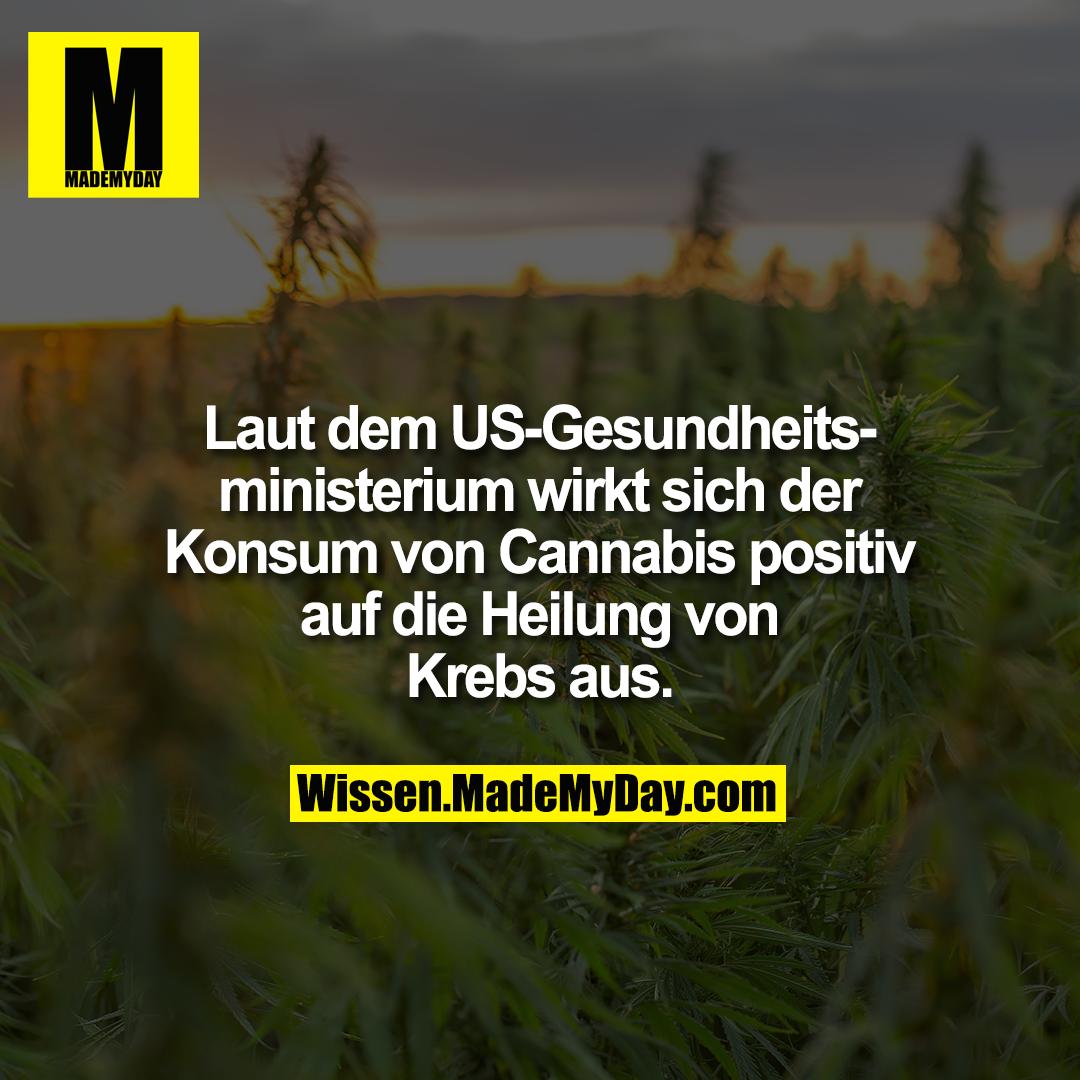 Laut dem US-Gesundheitsministerium wirkt sich der Konsum von Cannabis positiv auf die Heilung von Krebs aus.