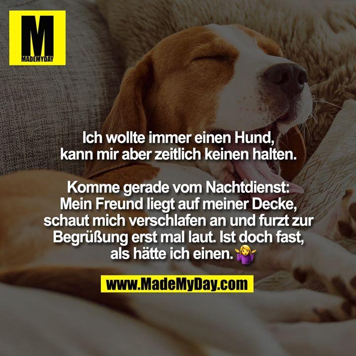 Ich wollte immer einen Hund, kann mir aber zeitlich keinen halten. Komme gerade vom Nachtdienst: Mein Freund liegt auf meiner Decke, schaut mich verschlafen an und furzt zur Begrüßung erst mal laut. Ist doch fast, als hätte ich einen. �