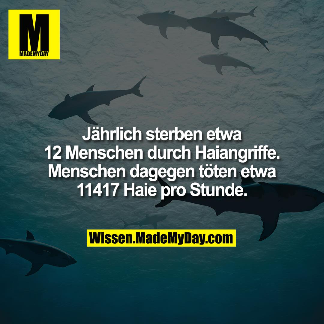 Jährlich sterben etwa 12 Menschen durch Haiangriffe. Menschen dagegen töten etwa 11417 Haie pro Stunde.