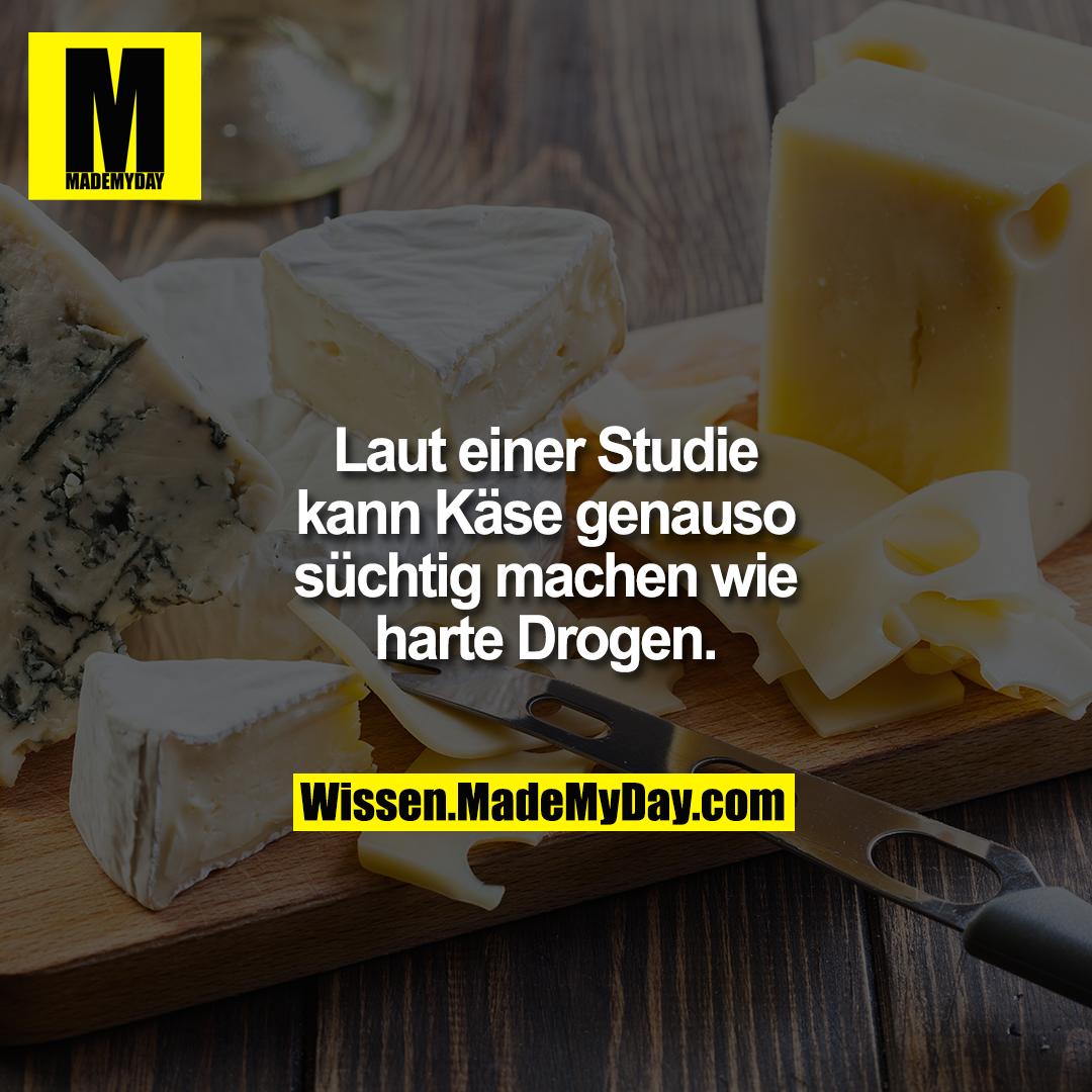 Laut einer Studie kann Käse genauso süchtig machen wie harte Drogen.