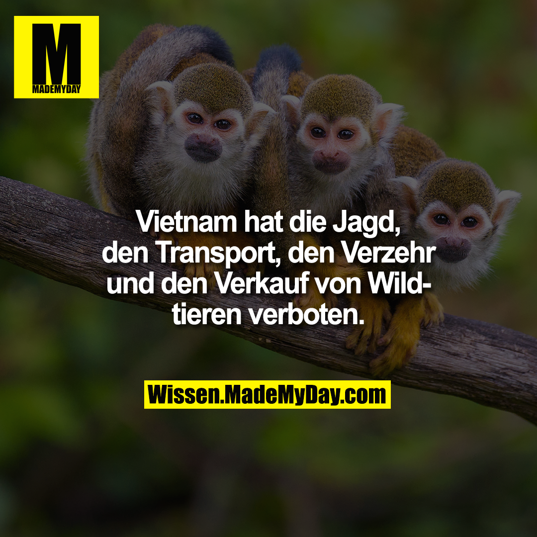 Vietnam hat die Jagd, den Transport, den Verzehr und den Verkauf von Wildtieren verboten.