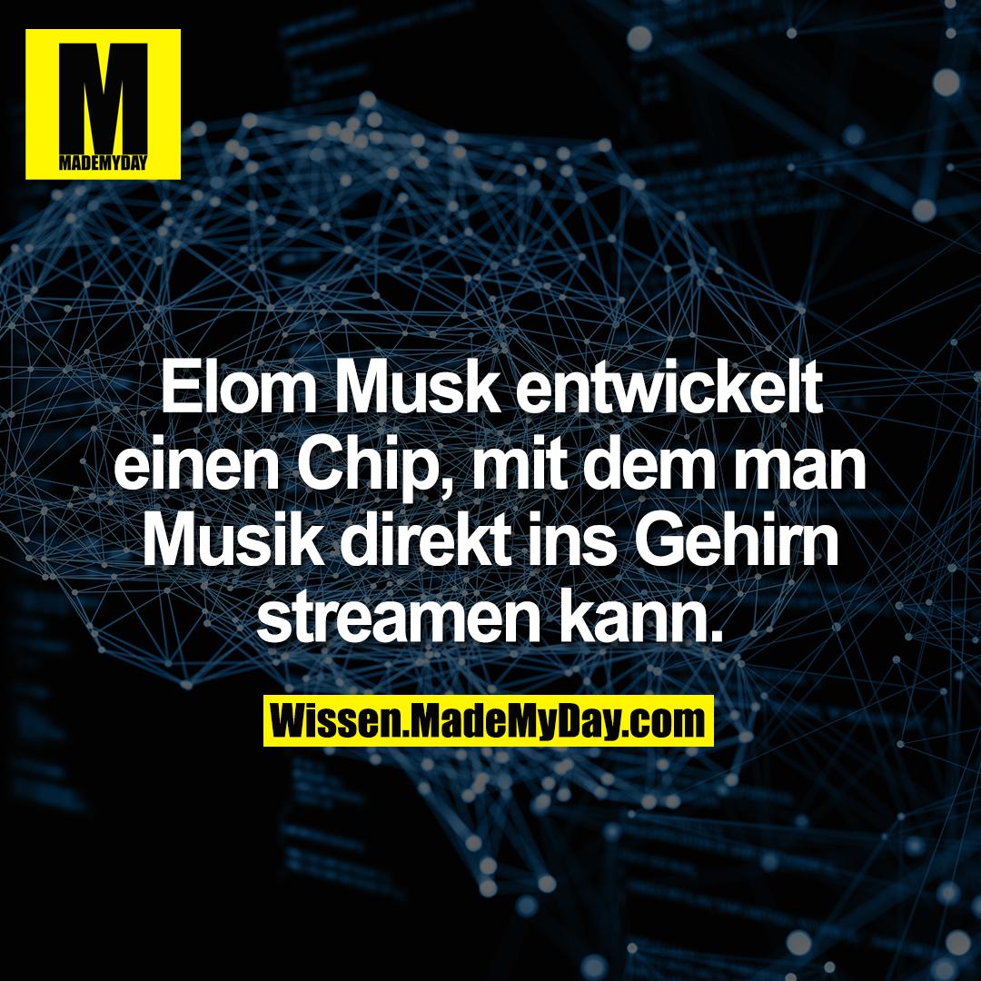 Elom Musk entwickelt einen Chip, mit dem man Musik direkt ins Gehirn streamen kann.